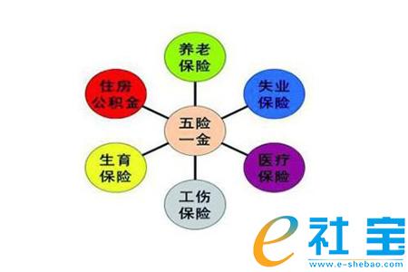 北京个人彩立方平台下载怎么补缴?
