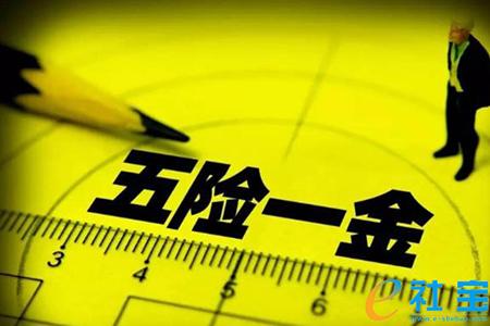 潍坊彩立方平台下载补缴指南